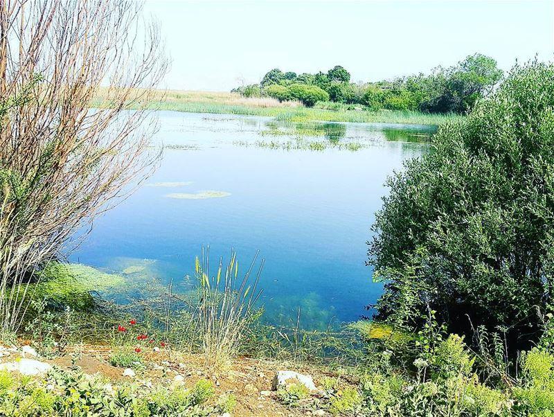 hiking hikingadventure landscape livelovelebanon insta_lebanon...