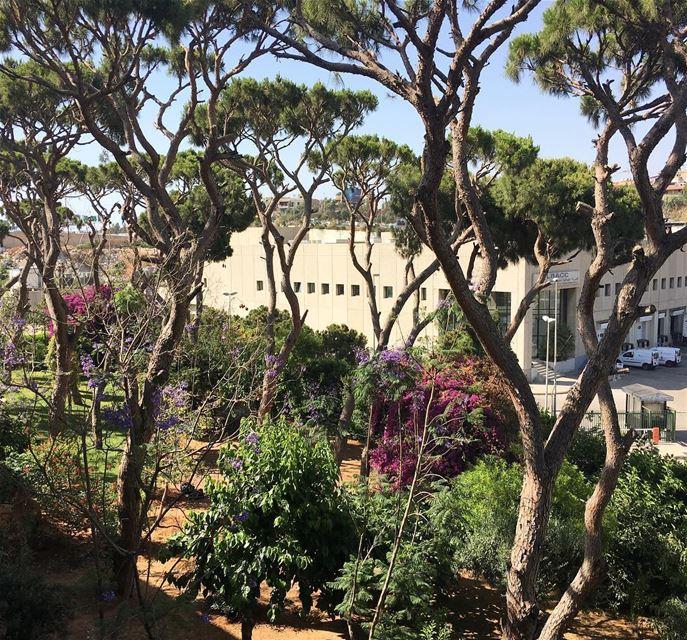 LibanPost GardenRafic Hariri International Airport libanpost ...