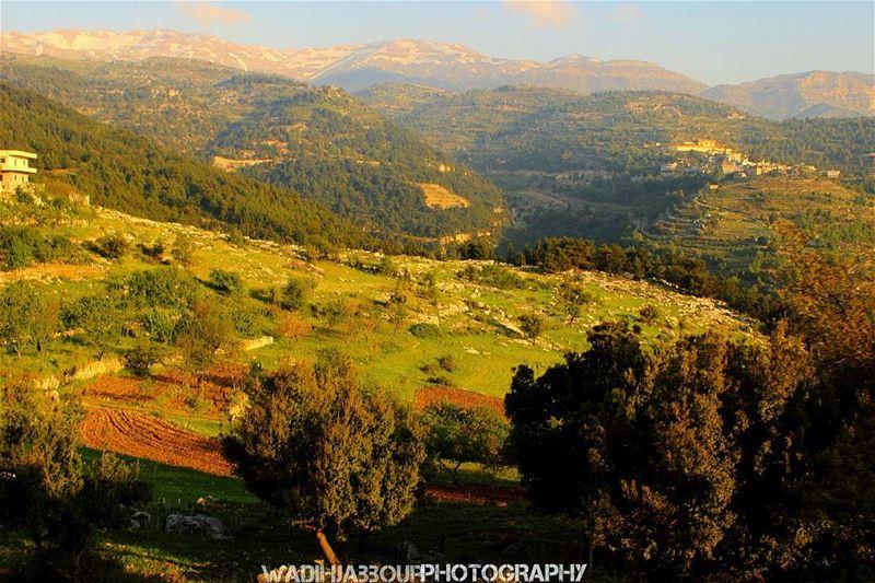 🔹🔹🔹🔹🔹 insta_lebanon igpowerclub Super_Lebanon ig_lebanon ... (Imar)