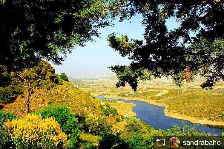 Repost from @sandrabaho 💛💚 insta_lebanon qaraoun qaraounlake ... (Saghbîne, Béqaa, Lebanon)