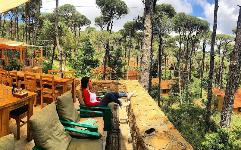 Sit back and just relax🌳🌞 Photo Credits: @jana_kanso LaMaisonDeLaForet ...