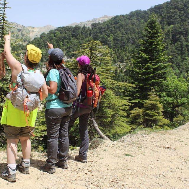 hikers hikingadventures wildadventures colorful greenzone ehden ... (Horsh Ehden)