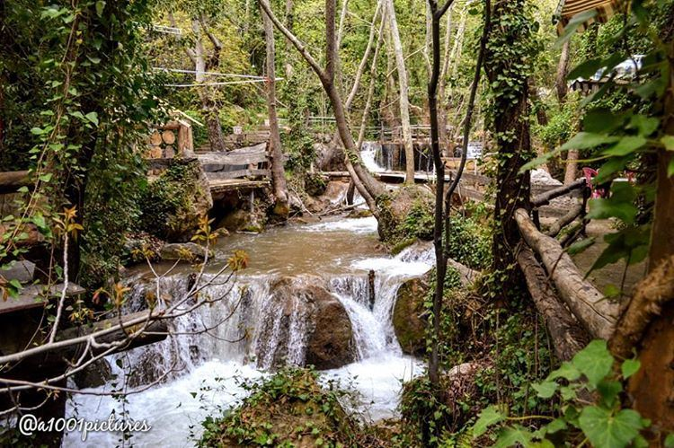 Nature's peace will flow into you as sunshine flows into trees. nature ... (Tannurin At Tahta, Liban-Nord, Lebanon)
