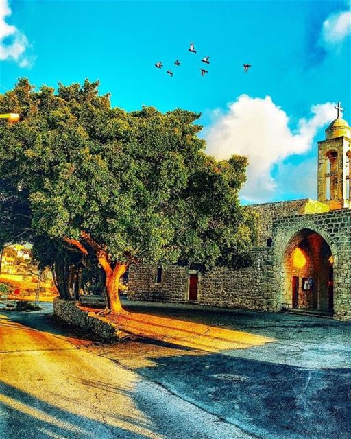 """ The Walls Of Hospitals Have Heard More Prayers Than The Walls Of... (Edde El Batroun)"