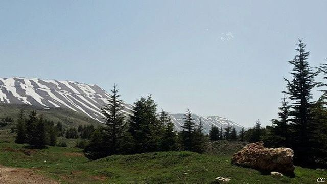 nature lebanon north cedars livelovelebanon naturephotography ...