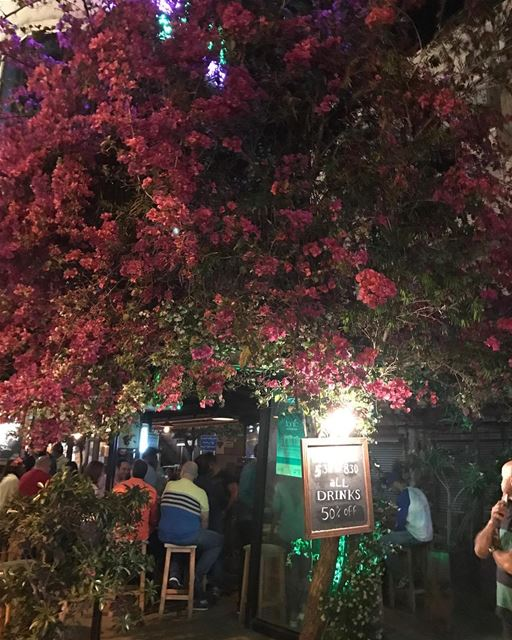 Jounié night life... just as good as Beirut's! 🍸 PubStreet Jounié ... (Joünié)