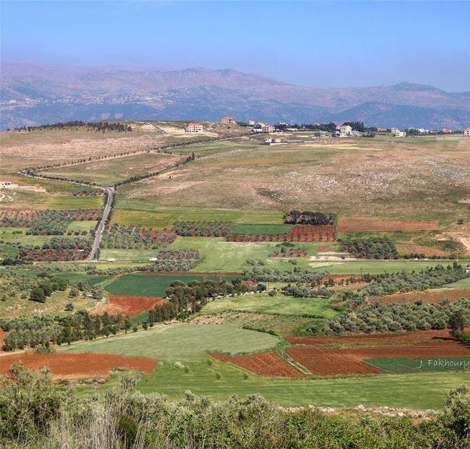 That colorful HomeView @livelovemarjeyoun (Marjayoûn, Al Janub, Lebanon)