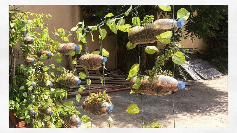 Bottles' levitation 🍃 ... livelovelebanon livelovebeirut beirut ... (Beirut, Lebanon)