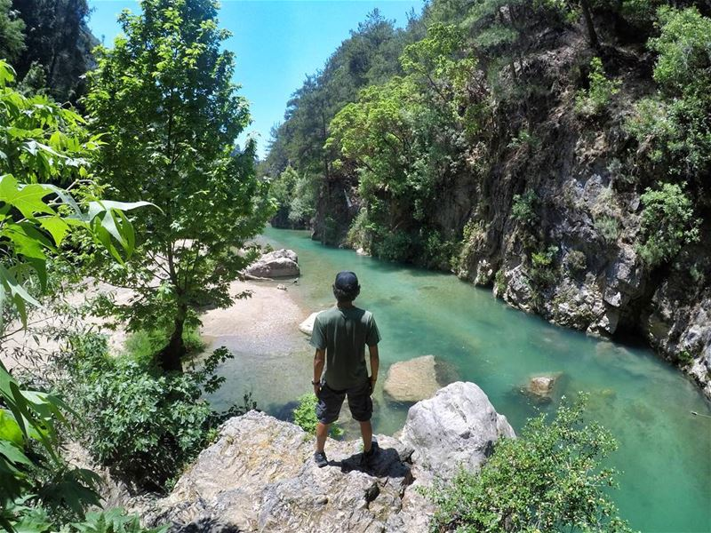 We have one life and there is one extraordinary world created for us to... (Chouwen)
