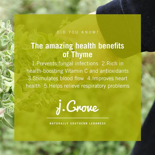Because thyme is so much more than an after-thought ingredient.🍃https://w