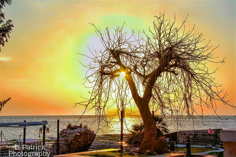 There's nothing as awesome as a lebanese sunset!🌅--- sunset  lebanon ... (Byblos - Jbeil)