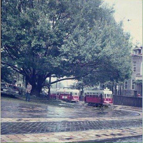ترمواي بيروت بالقرب من الجامعة الامريكية عام ١٩٦٣ ،