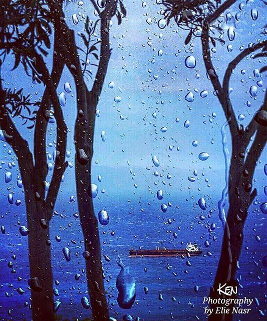 ...إذا أتى الشتاء.. وحركت رياحه ستائري أحس يا صديقتي بحاجة إلى البكاء ع (Hamâte, Liban-Nord, Lebanon)