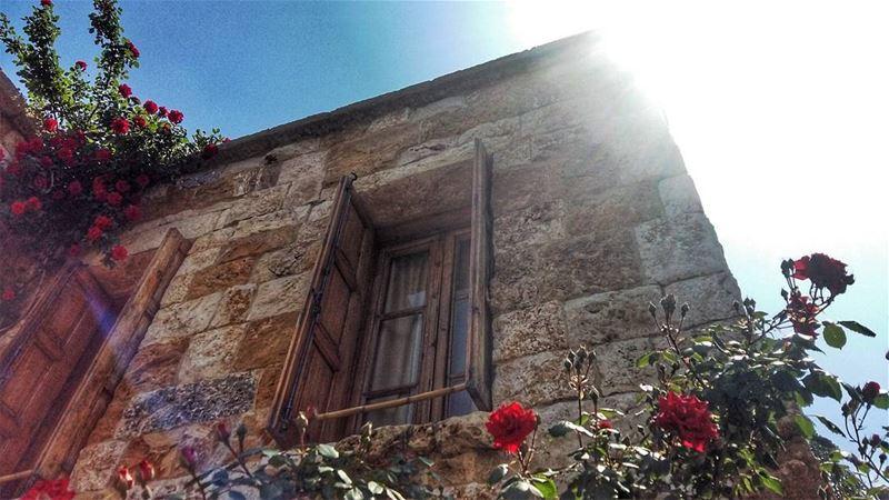 Authenticity at its best.. ancient simple calm wooden window flowers... (Atelier Assaf Assaf)