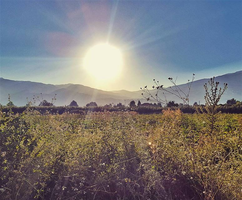 Home is where the heart is. GoodMorning LiveLoveBekaa... (Beqaa Valley)