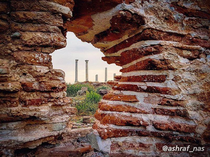 صور بطلة المدن... والكلام عليها ما له نهايةسعيد عقل - لبنان إن حكى... (Roman ruins in Tyre)
