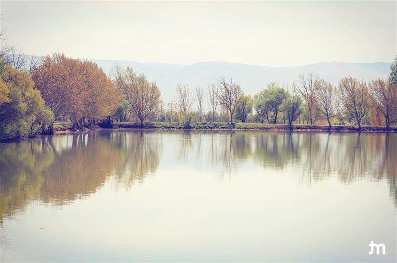 - Taanayel lake -... lebanon livelovenature livelovelebanon ... (Taanayel Lake)