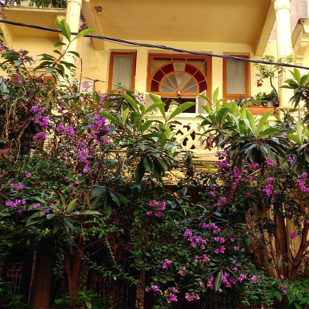 Tucked in an alley, hidden from view, a traditional Beirut home with... (Beirut, Lebanon)
