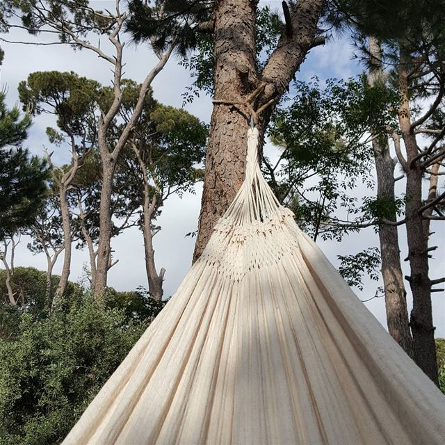 Relaxing  hammok  swing  rest  relax  village  pinetrees  pine  sky ... (El Qalaa, Mont-Liban, Lebanon)