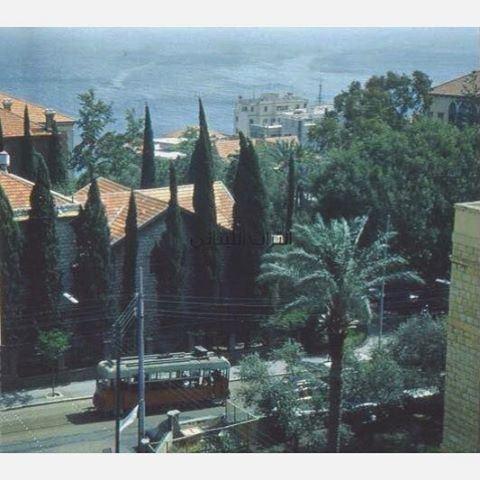 الترمواي في شارع بلس بالقرب من الجامعة الامريكية بيروت عام ١٩٥٥ ،