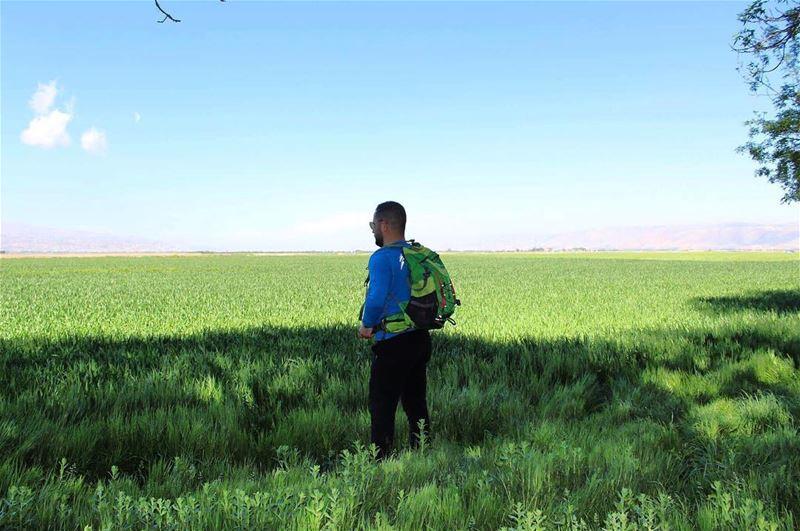 greenpeace greenland beqaavalley beqaa lebanon insta_lebanon ... (Beqaa Valley)