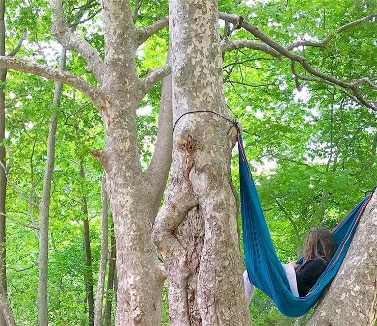 Find a hammock to lay 🌿 Lebanon ... (Basloukit)