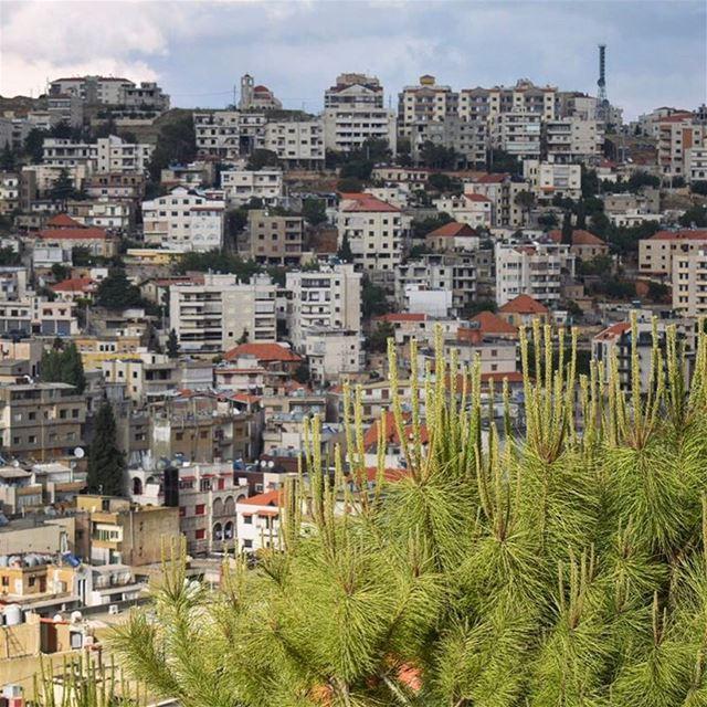 Au coeur du Bekaa 🌱🌿🍃••••••••••••••••••••••••••• prolebanon ... (Zahlé, Lebanon)