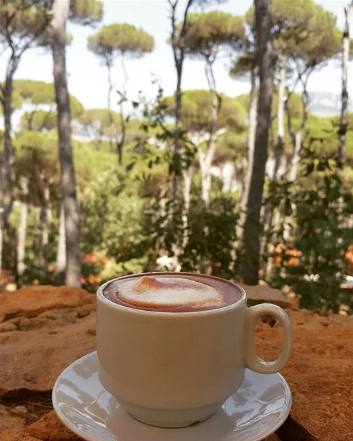 Good morning from Bkassine☕🌳Photo Credits: @nadakhalife82 📸 Morning ... (La Maison de la Forêt)