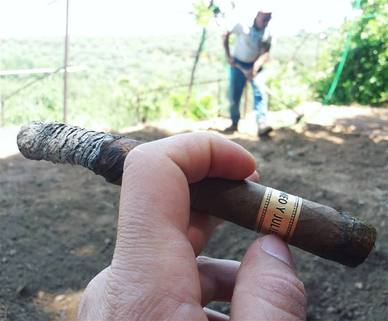 Peaceful morning .. with Romeo Y Julieta Dominican republic ---------------
