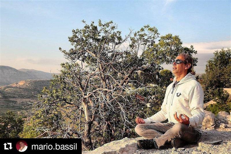 Repost @mario.bassil (@get_repost)・・・Elevate 🍃 MarioBassil nature ...
