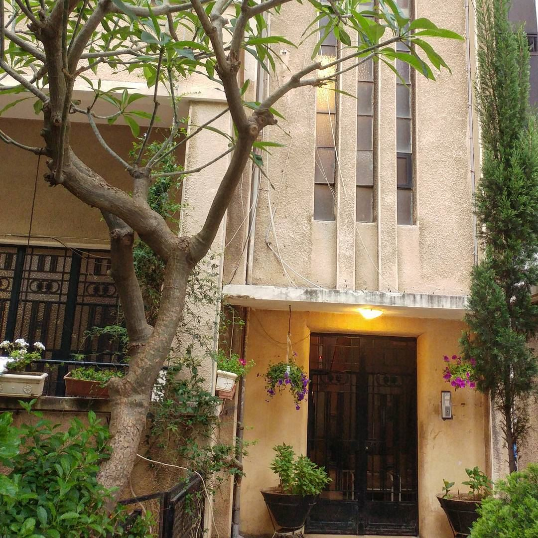 A long paved entrance leading to an iron gate flanked by potted plants.... (Beirut, Lebanon)