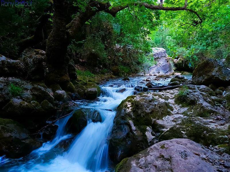 Such beautiful scenery! 💚🏞🏞💚..... view hikingworking ... (Miziâra, Liban-Nord, Lebanon)