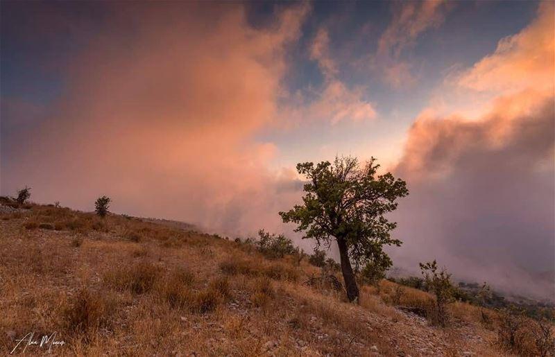 sunset shouf mountain lebanon nature clouds hiking ...