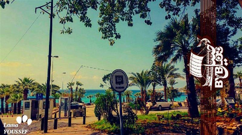 lebanesenature_ LAMA_YOUSSEF ... (Byblos, Lebanon)