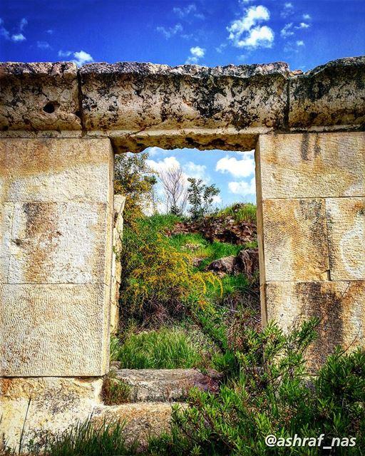 بمجدك احتميت... بترابك الجنّةعَ إسمك غنّيت عَ إسمك رح غنّي...... (Roman ruins in Tyre)