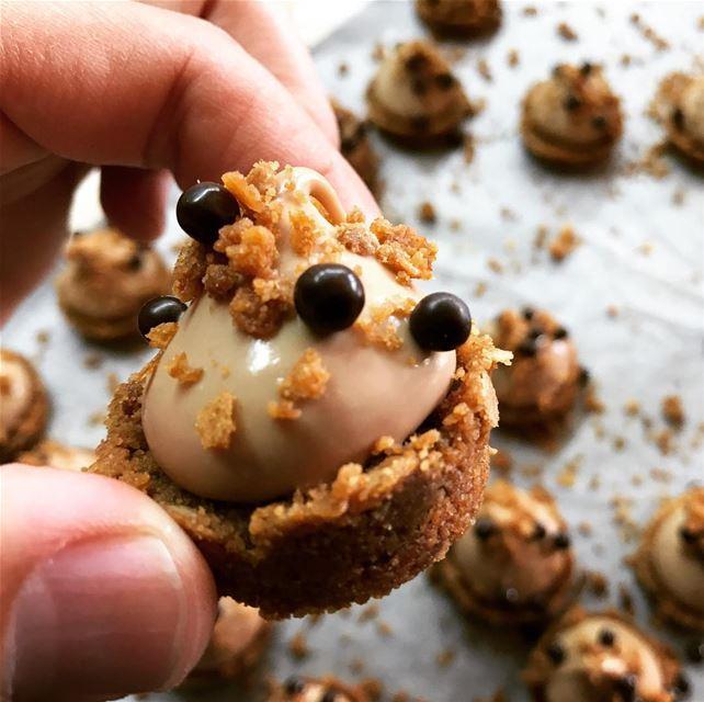 Gourmandise du soir ! 😋 Tartelette croquante gianduja 🤤 livelovefood ...