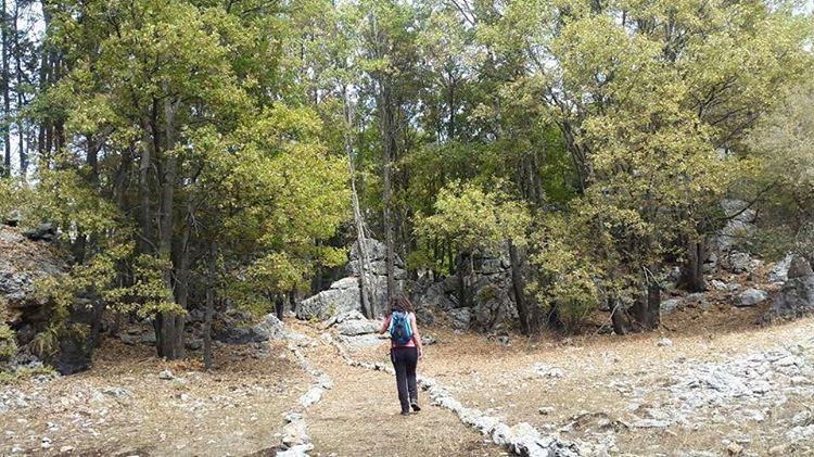 Go take a Hike! JabalMoussa ecotourism ecotourismleban whatsuplebanon...