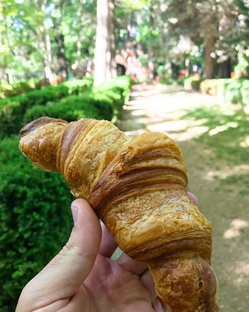 Un croissant s'il vous plait ! 🥐😋 livelovefood livelovebeirut beirut ... (Deïr Taanâyel, Béqaa, Lebanon)