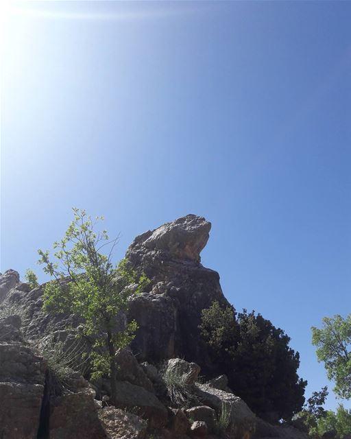 صخرة بشكل حرباء 😍😍😍😍 livelovelebanon lebanoninapicture ourlebanon🌲... (Baskinta, Lebanon)