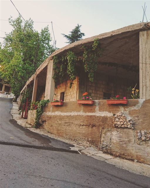 Mountain houses & Flower pots.🔽 mayrouba flower mountlebanon ... (Mayruba, Mont-Liban, Lebanon)