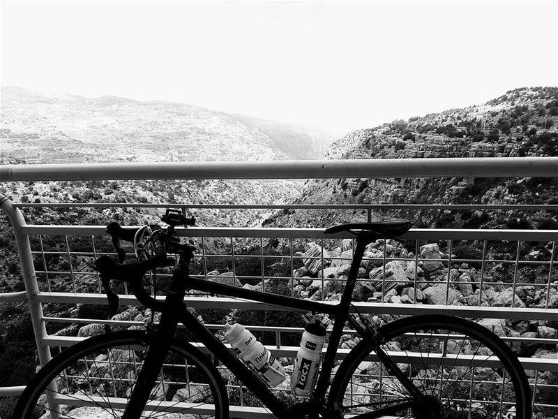 cyclinglife cycling cyclingshots🚴 cyclingday cycling bestcompany ... (Lebanon)