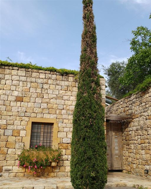 Restored traditional rural home in the Lebanese countryside. stonecutter ... (Maasser Beit El Dine)