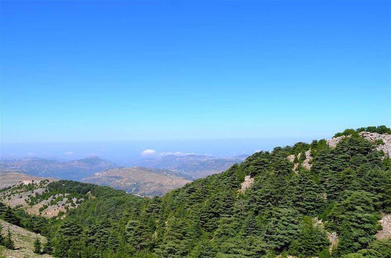 A 🖼 from 🇱🇧. (Aïn Zhalta, Mont-Liban, Lebanon)