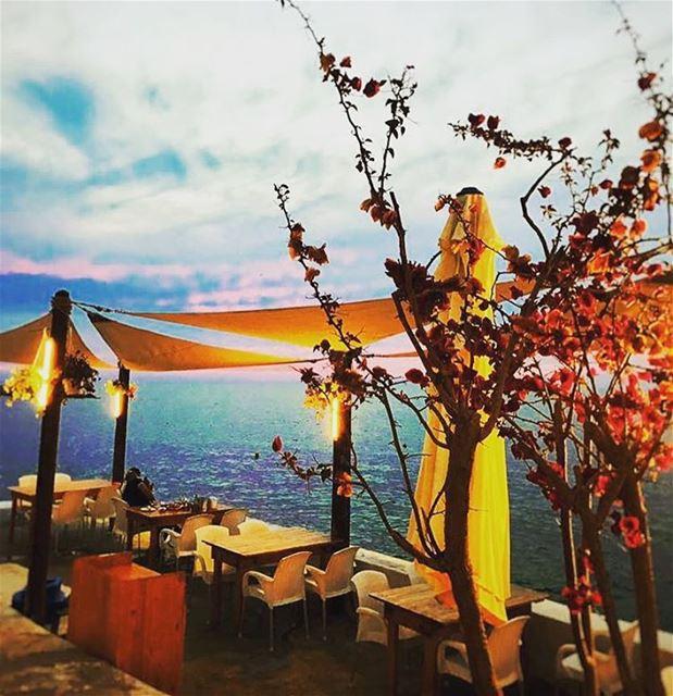 anfeh sunset anfehalkoura chezfouad ta7telri7 nature ... (Chez Fouad)