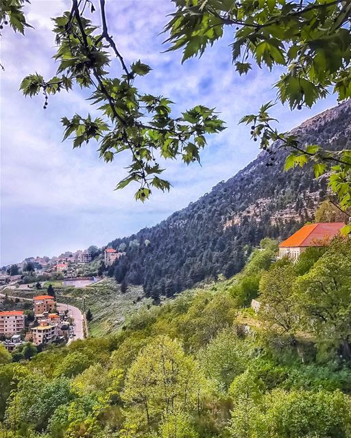 Hope is the thing with feathers,  that perches in the soul, and sings the... (Ehden, Lebanon)