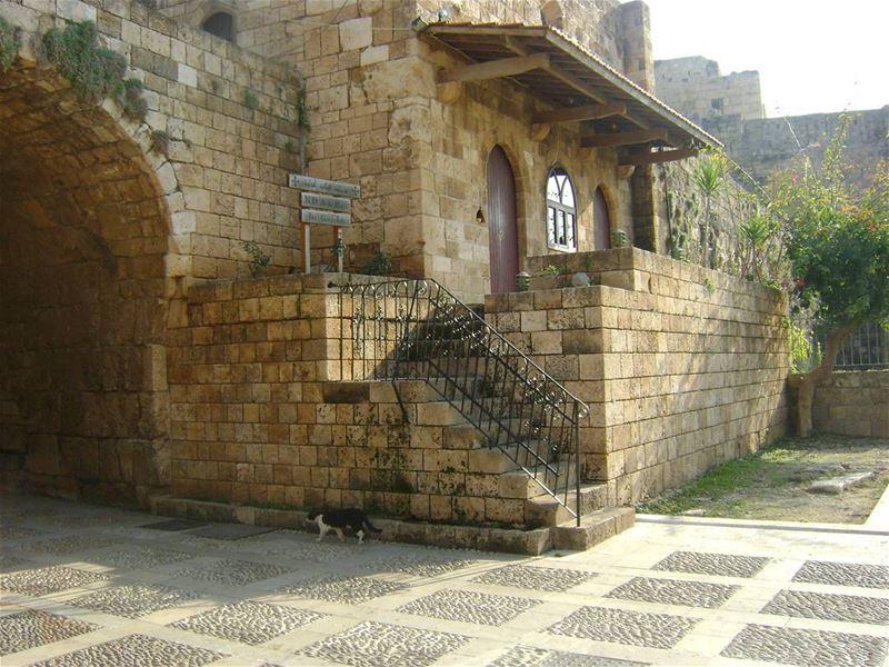 Jbeil, Lebanon 🌲❤🌲 LiveLoveLebanon LiveLoveCedars Lebanob Jbeil ... (جبيل)