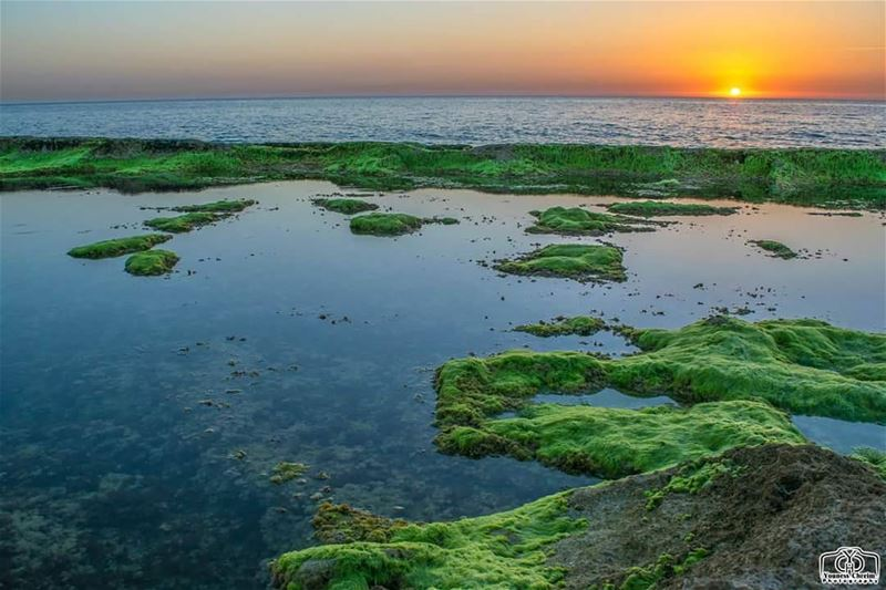 غروب من شاطئ البترون sunset sunsetlebanon sunsetbatroun lebanon ...