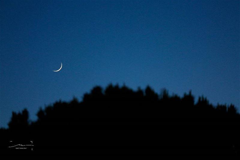 Our lovely moon 🌙 (Shailei)