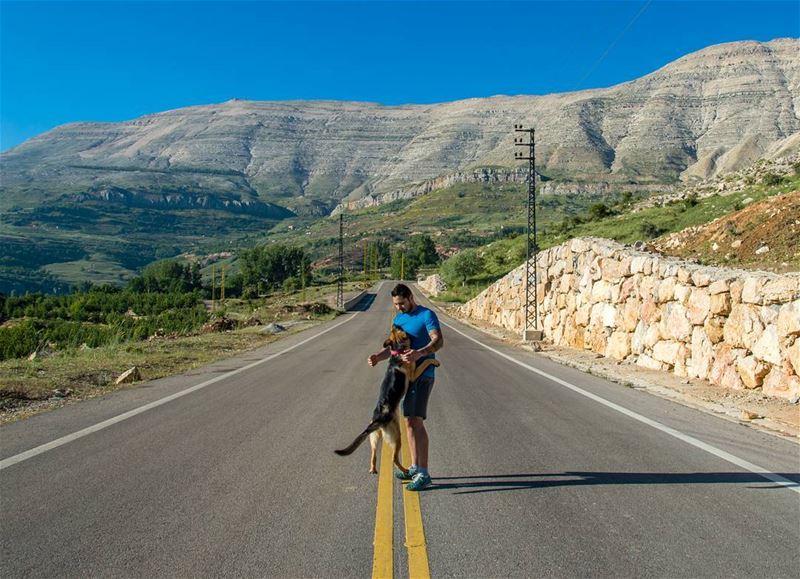 🐶🍃..... sunday roads road mountains dog dogs dogsofinstgram animal... (Mount Sannine)
