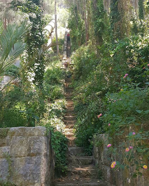 Trail of stairs ... 788 steps 😌💚 kaftoun ... (Kaftoûn, Liban-Nord, Lebanon)
